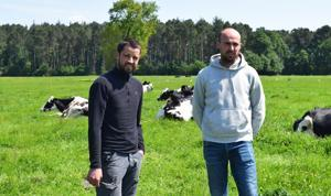 Lait - Une gestion performante de l'herbe
