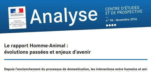 Rapport homme-animal  - La domestication de l'animal remise en cause