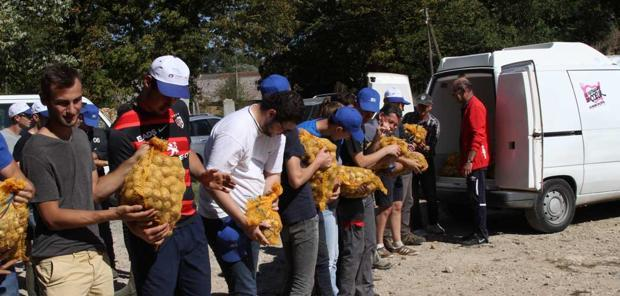 Don alimentaire  - Le glanage solidaire s'organise en Normandie