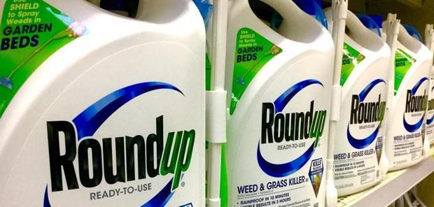 Glyphosate - Un avocat anti-monsanto condamné pour tentative d'extorsion de fonds